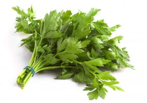 parsley-flat1